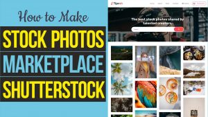 How to Make Stock Photos Digital Marketplace like Shutterstock and Unsplash with WordPress & Dokan